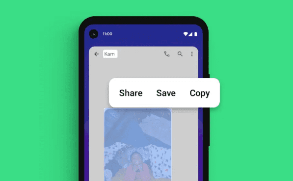 Select & share text in Android 11